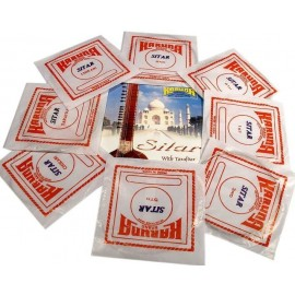 SITAR STRINGS SET